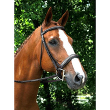 KL Select Red Barn Tryon Bridle Cavesson