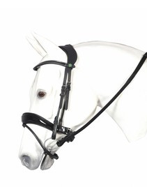 Henri De Rivel Pirouette Dressage Bridle