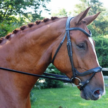 Red Barn Arena Ergonomic Dressage Bridle