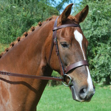 KL Select Black Oak Foxtrot Hunt Bridle
