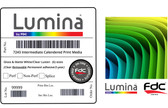 Lumina 7243 - Intermediate, Calendered Removable Clear Adhesive Print Film - (2-Year, 3.4 Mil) - 54""