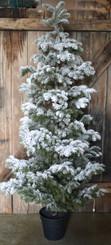 """SNOW FLOCKED PINE TREE - LG - 67"""""""