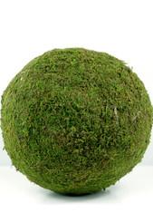 """MOSS BALL - 25 CM  (10"""")"""