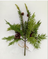 "PINE & JUNIPER PICK 11"" - 2 PC BU"