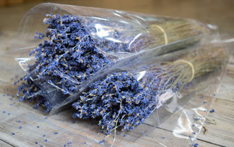 FRENCH LAVENDER - CLEAR SLEEVED - MIN. 6