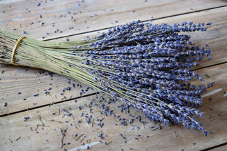 FRENCH LAVENDER - UNSLEEVED - 50 BUNCHES BULK
