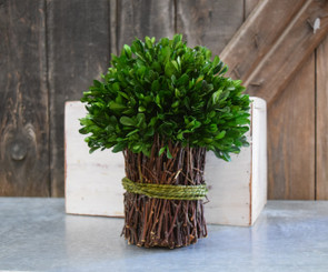 """PRESERVED BOXWOOD BOUQUET - GARDEN STYLE - 10.25"""""""