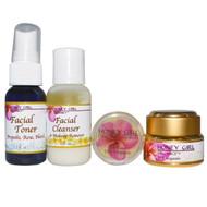 Honey Girl Organics, Organic Skin Care Kit, 4 Piece Kit