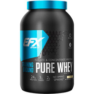 EFX Sports, Training Ground, Pure Whey, Vanilla, 38.4 oz (1089 g)