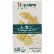 3 PACK OF Himalaya, Ginger, 60 Caplets
