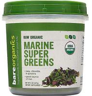 BareOrganics Marine Super Greens Powder Raw -- 8 oz