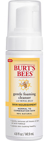 3 PACK of Burt's Bees Skin Nourishment Gentle Foaming Cleanser for Normal to Combination Skin -- 4.8 fl oz