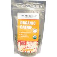 3 PACK OF Dr. Mercola, Organic Catnip, 1 oz (28 g)