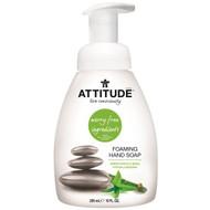 3 PACK of ATTITUDE, Foaming Hand Soap, Green Apple & Basil, 10 fl oz (295 ml)