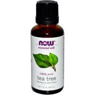 3 PACK of Now Foods, Essential Oils, Tea Tree, 1 fl oz (30 ml)
