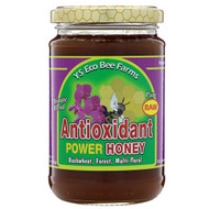 3 PACK of YS Eco Bee Farms Antioxidant Power Honey -- 13.5 oz