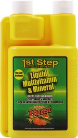 High Performance Fitness, 1st Step Pro-Wellness Liquid Multivitamin and Mineral,  Citrus Blast - 16 fl oz
