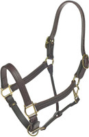 "DELUXE LEATHER TRACK 1"" HALTER"
