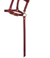 "Weaver Leather 5/8"" Sucking with Catch Strap Riveted Halter"