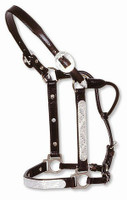 CIRCLE Y SHOW HALTER w/ ENGRAVED SILVER, Size Yearling #0419-0000