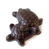Turtle Chocolate Turtles | Finest Dark Belgian & Milk Chocolates from Lang's Chocolates