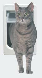 ChubbyKat™/HeftyKat™ Door - Ideal Pet Products