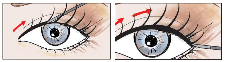 long-lash-diagram.jpg