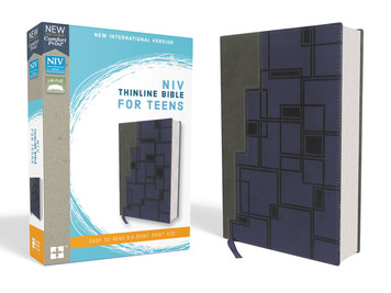 NIV Thinline Bible for Teens- Grey/Blue