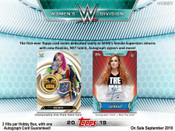 2019 Topps WWE Women's Division Wrestling Hobby Box