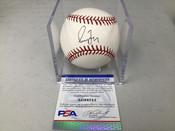 Greg Maddux Chicago Cubs Autographed Baseball PSA COA W/Holder #5300