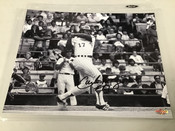 Carlos May Chicago White Sox Autographed 8x10 #5377