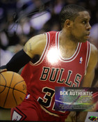 CJ WATSON (Chicago Bulls) Autographed 8x10 Photo