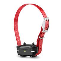Garmin - PT 10 Dog Device (collar)