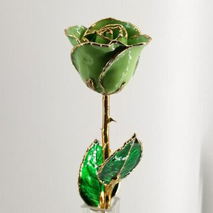"""Real semi-opened rose, with petals dipped in rich green lacquer and trimmed in 24kt gold. Stem is approximately 12"""" long and is heavy gold plated. Each rose is elegantly wrapped in gold tissue and packaged in a gold, two-piece outer box. Price includes the vase, and regular shipping. Available in other colors. Call for color choices."""