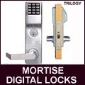 Alarm Lock Standalone Access Control Locks