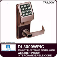 Alarm Lock Trilogy DL3000WPIC - Weatherproof Interchangeable Core