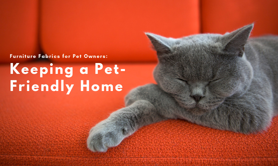 Furniture Fabrics for Pet Owners Keeping a Pet-Friendly Home