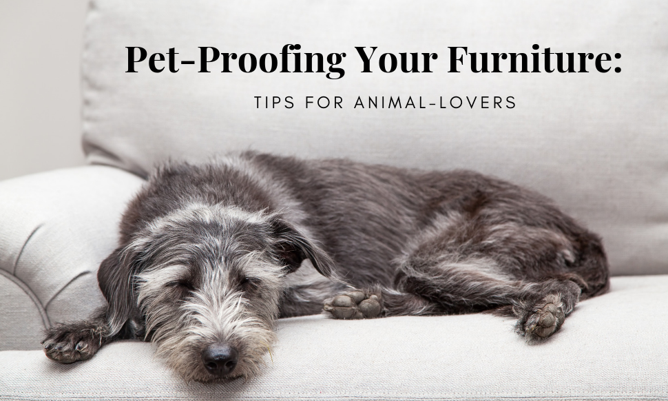 Pet-Proofing Your Furniture: Tips for Animal-Lovers