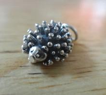 16x11mm 3D Hedgehog Porcupine Sterling Silver Charm