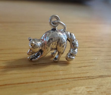 3D 16x14mm Raccoon Racoon Sterling Silver Charm