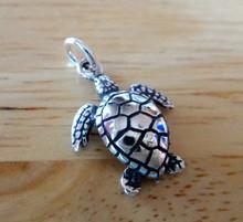 14x17mm Small Ridley Loggerhead Sea Turtle Sterling Silver Charm!