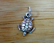 Tiny Ridley Loggerhead Sea Turtle Sterling Silver Charm