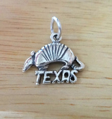 Sterling Silver 18x16mm Texas with Armadillo Charm