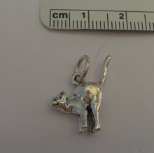 3D 20x15mm Scaredy Cat Sterling Silver Charm