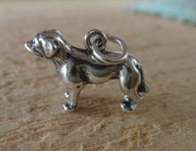 Sterling Silver 3D 20x12mm 3.5gram Lab Labrador Retriever Dog Charm