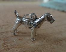 Sterling Silver 3D 15x20mm 3.6gram Airedale Bingley Waterside Terrier Dog Charm
