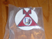Old OA National Logo Tee Pee Pin - Scout