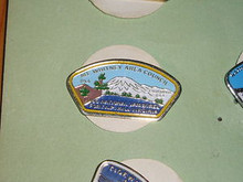 Mt. Whitney Area Council 1985 NJ JSP Shaped Pin - Scout