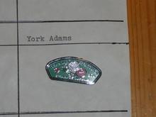 York-Adams Council CSP Shaped Pin - Scout