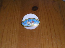 Watchung Area Council CSP shaped Pin - Scout